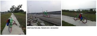 Yishun Ave 1 West Seletar Link 19102014