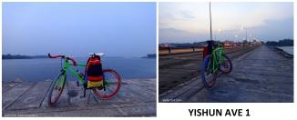 Yishun Ave 1